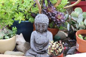 blogphotobuddha